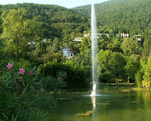 приморский парк город Гагра