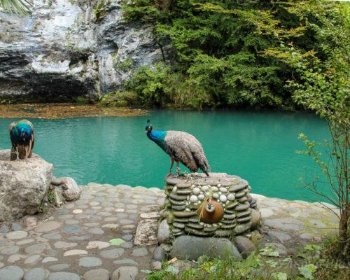 Голубое озеро в ходе экскурсии на озеро Рица
