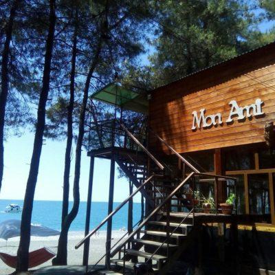 Отель Мон Ами в Пицунде у моря